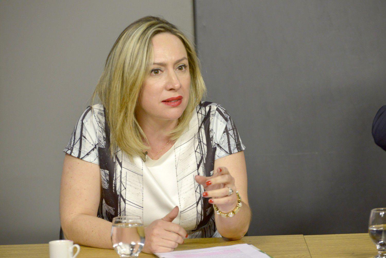 Deputada estadual Adriana Accorsi (Foto: Reprodução / Alego)