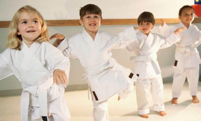 grande maioria dos pais pensam em arte marcial para crianças por que não têm mais controle sobre seus filhos (Foto: Reprodução)