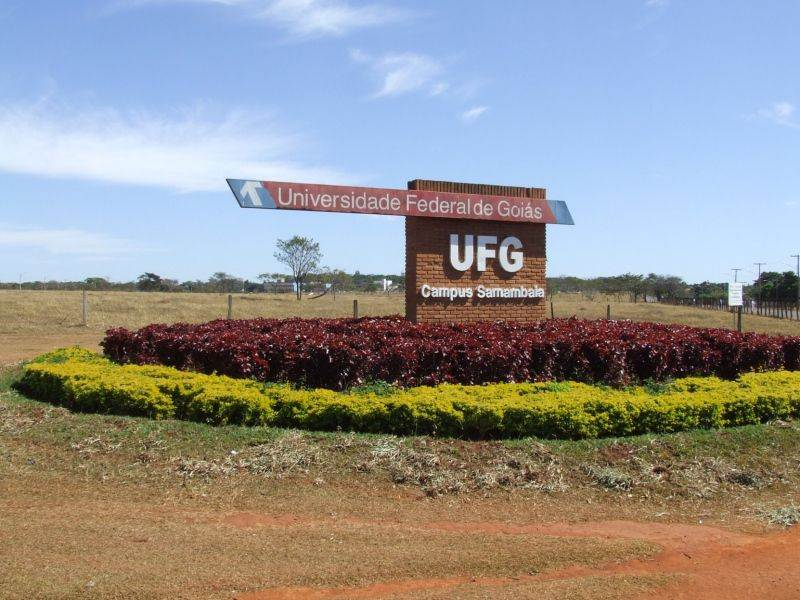 ufg-estado-greve