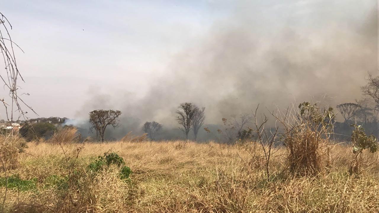 População ateou fogo em mata para afugentar assaltante   Foto: Leitor/WhatsApp