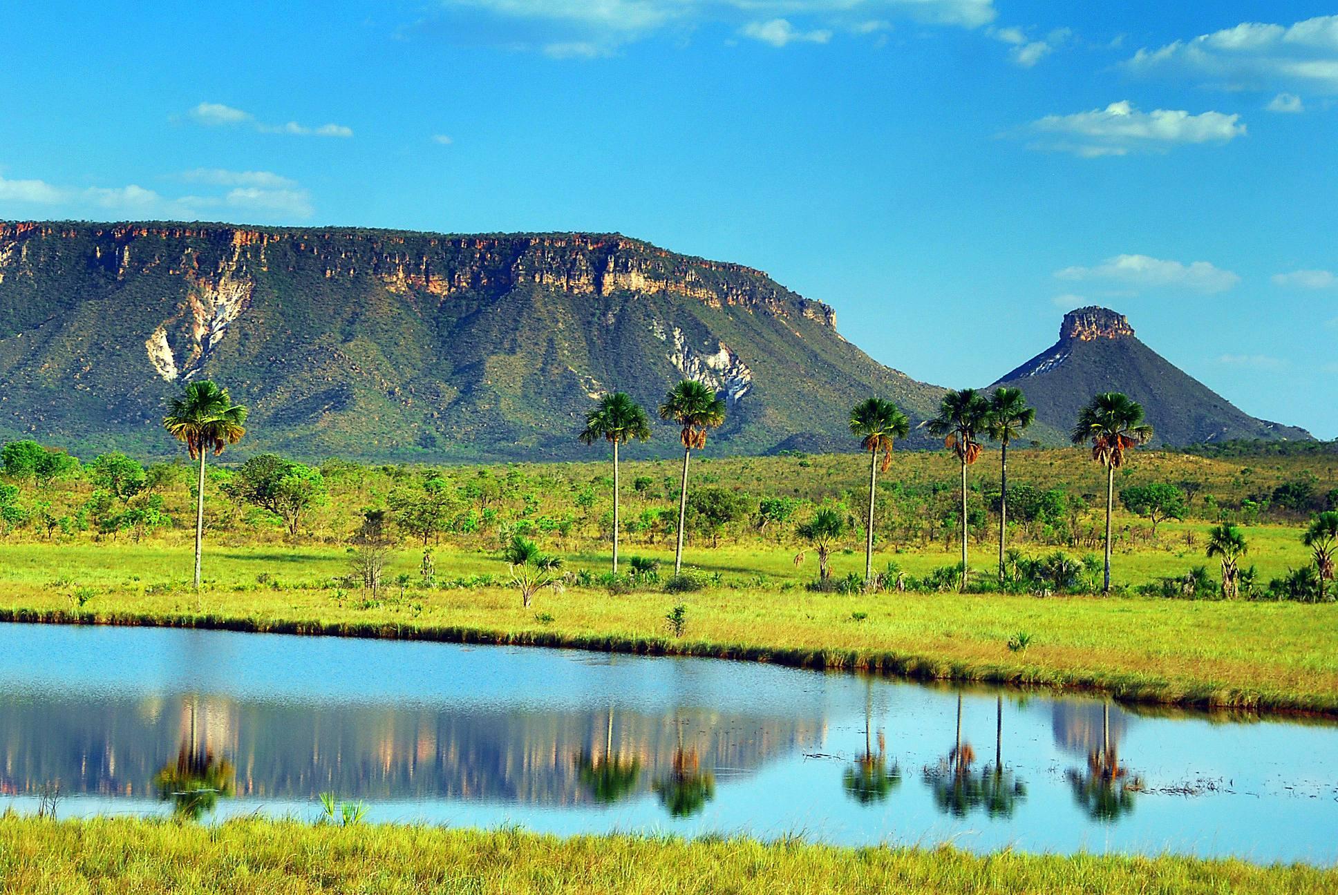 Jalapão é uma cidade turística tocantinense com verdadeiros paraísos naturais   Foto: Reprodução