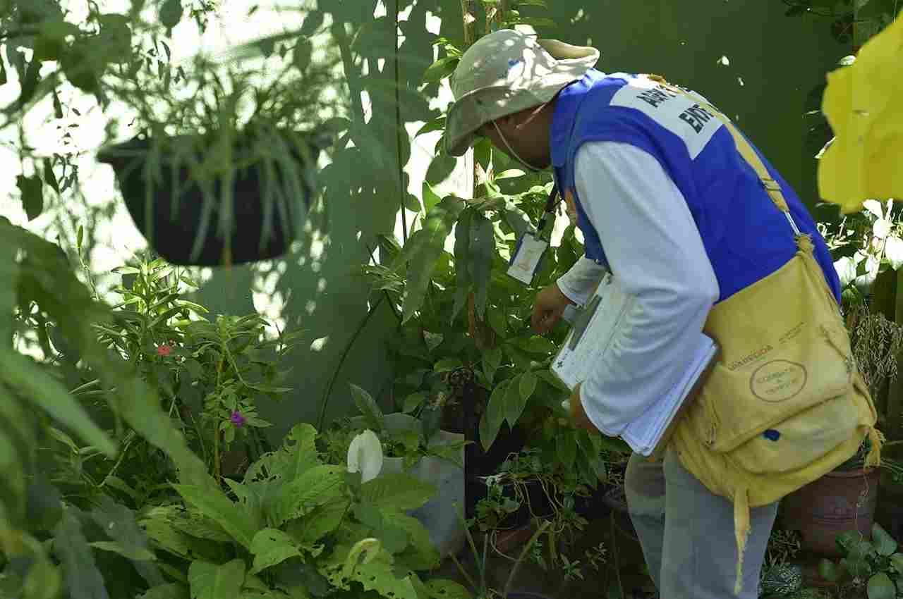 Prefeitura em Ação Aparecida combate dengue