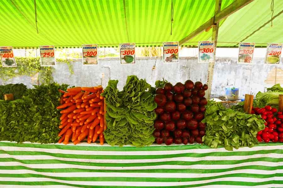 Segundo a Associação dos Feirantes de Aparecida de Goiânia (Afag), são cerca de 7 mil pessoas que trabalham em feiras livres no município e dependem delas para o sustento das suas famílias | Foto: Cesar Ogata / Secom